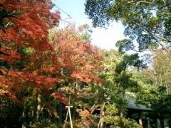 02)鎌倉「壽福寺」