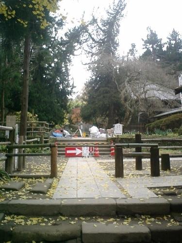 03)北鎌倉「浄智寺」紅葉の季節。あれ?鐘楼門が無い?現在、修理中との事。