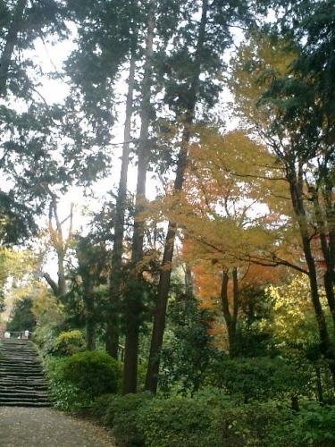 04)北鎌倉「浄智寺」紅葉の季節