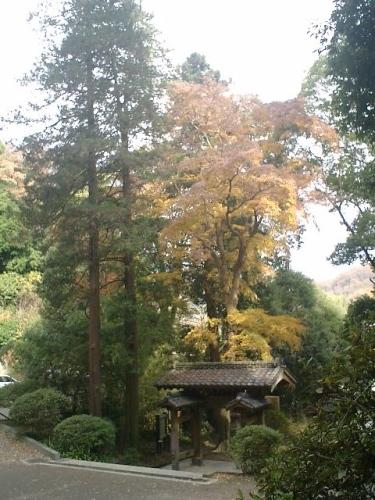 07)北鎌倉「浄智寺」紅葉の季節
