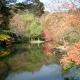 01)鎌倉「鶴岡八幡宮」