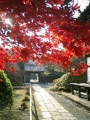 06)鎌倉「浄光明寺」